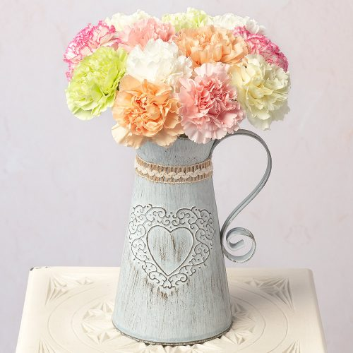 12 Classic Carnations