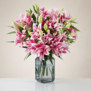 Scented Double Lilies